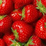 Omiljeno voće koje brzo truli: Uz ovaj trik jagode će ostati svježe danima