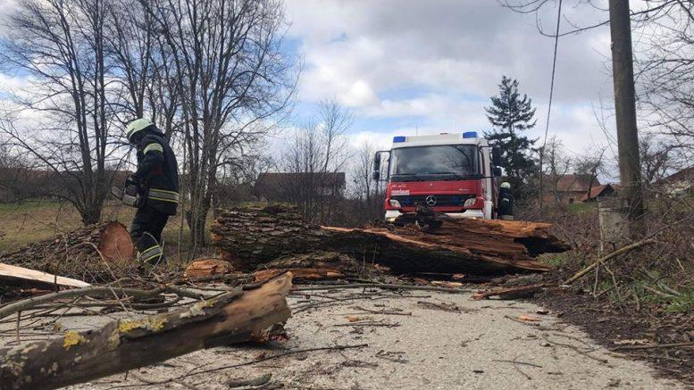 Foto Nevrijeme U Zagrebu I Okolici Rusilo Stabla Odnijelo I Krov Na Maksimirskoj Vatrogasci Imaju Pune Ruke Posla Hrvatska Danas